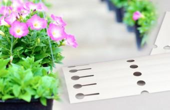 Etiquetas para plantas